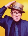 Elvis Costello Signed 8x10 Photo