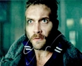 Jai Courtney Signed 8x10 Photo - Video Proof
