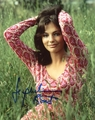 Jacqueline Bisset Signed 8x10 Photo - Video Proof