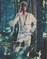 Jeff Daniels Signed 8x10 Photo - Video Proof
