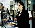 Lili Taylor Signed 8x10 Photo - Video Proof