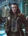 Luke Evans Signed 8x10 Photo