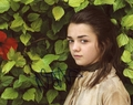 Maisie Williams Signed 8x10 Photo
