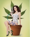 Mary Louise Parker Signed 8x10 Photo