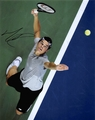 Milos Raonic Signed 8x10 Photo