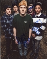 Neck Deep Signed 8x10 Photo
