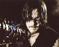Norman Reedus Signed 8x10 Photo