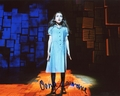 Oona Laurence Signed 8x10 Photo