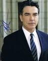 Peter Gallagher Signed 8x10 Photo