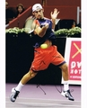 Robby Ginepri Signed 8x10 Photo