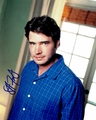 Scott Foley Signed 8x10 Photo