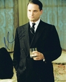 Shea Whigham Signed 8x10 Photo - Video Proof