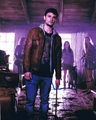 Shiloh Fernandez Signed 8x10 Photo - Video Proof