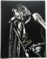 Steven Tyler Signed 11x14 Photo