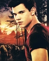 Taylor Lautner Signed 8x10 Photo