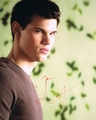 Taylor Lautner Signed 8x10 Photo - Video Proof