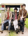 The Jonas Brothers Signed 8x10 Photo - Video Proof