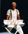 Tony Kanal Signed 8x10 Photo