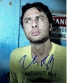 Zach Braff Signed 8x10 Photo