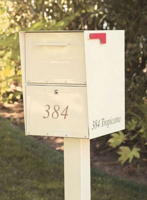 Oasis jr. Residential Curbside Locking Mailbox