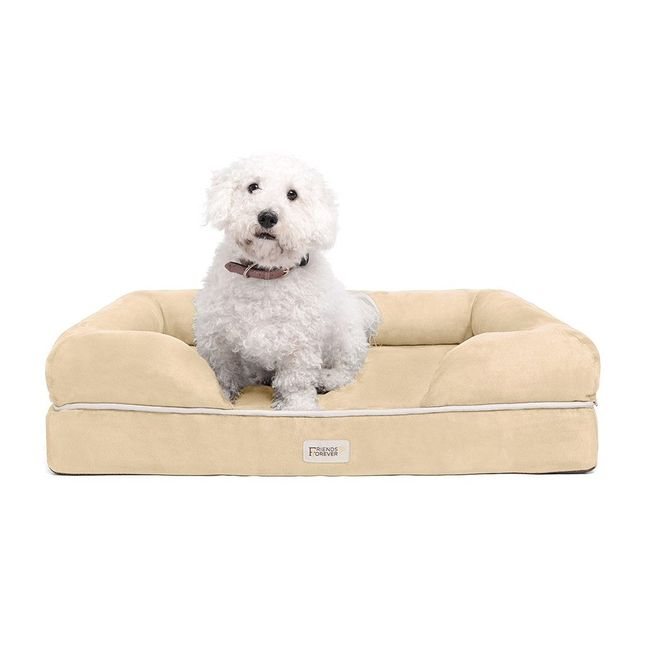 Chester Medium Solid Memory Foam Pet/Dog Bed with Beige Removable Cover & Non-Slip Bottom