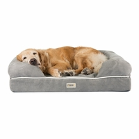 Chester Large Solid Memory Foam Pet/Dog Bed with Grey Removable Cover & Non-Slip Bottom