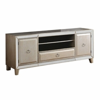 Halesworth Contemporary TV Stand with Mirror Trim Inlay in Antique Gold Finish
