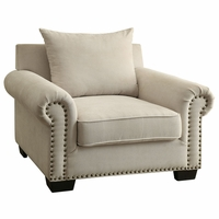 Skyler Transitional Ivory Chenille Fabric Upholstered Chair with Nailhead Trim