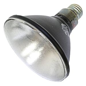 Black Light Bulb - Medium Base DISCONTINUED