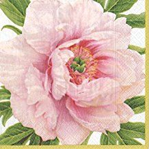 Caspari Blush Pink Floral Paper Beverage Cocktail Napkins , Pack of 20
