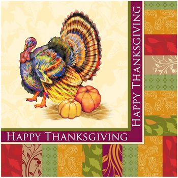 Fall Turkey Thanksgiving Lunch Napkins 24ct.