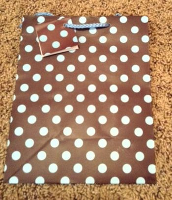 Medium Brown Gift Bag w/Light Blue Polka Dots and Light Blue Rope Handle
