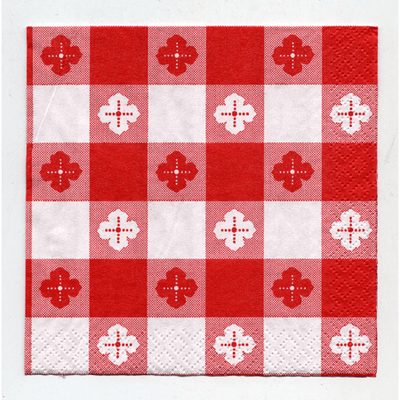 Red Gingham Beverage Napkin Picnic Style