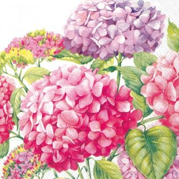 Sea Of Pink Blossoms White and Pink Lunch Napkins, 20ct.