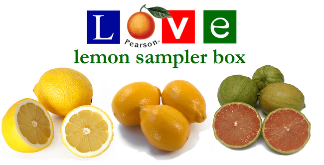 20 pound Lemon Sampler Box