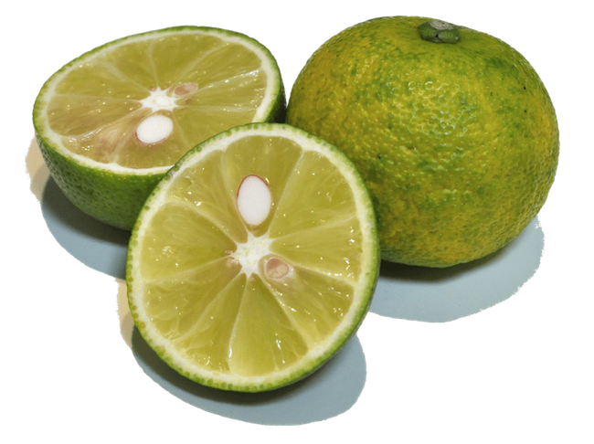5 pounds Sudachi Citrus