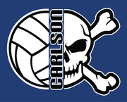 CARLSON VOLLEYBALL