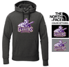 """""""THE NORTH FACE"""" HOODED SWEATSHIRT"""