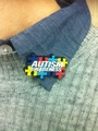 Autism Awareness Rubber Pin