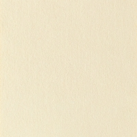 2 7/8 yards of Genuine Ambiance HP Ultrasuede Color 3424 chablis