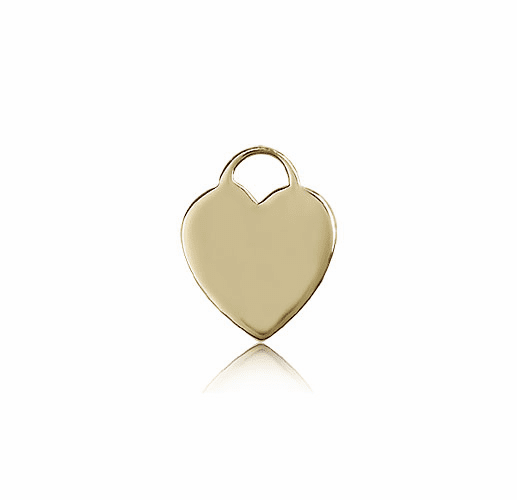 Bliss 14kt Gold Heart Medal Necklace