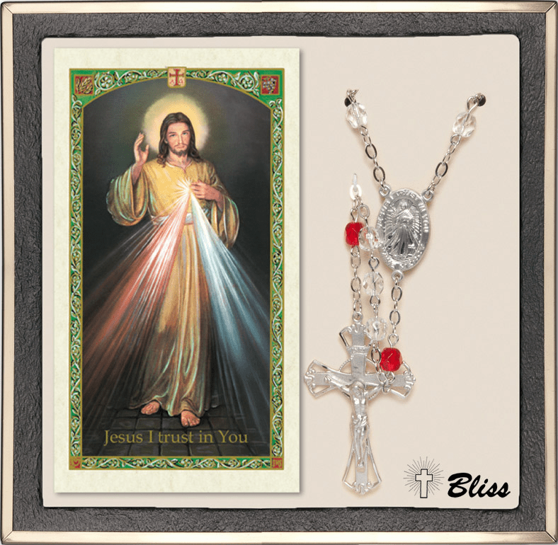 Bliss Chaplet of Divine Mercy Silver Rudy Rosary and Prayer Card