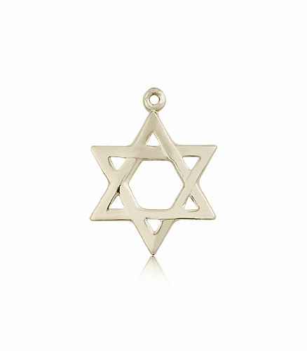 Bliss Manufacturing 14kt Gold Star of David Medal Necklace