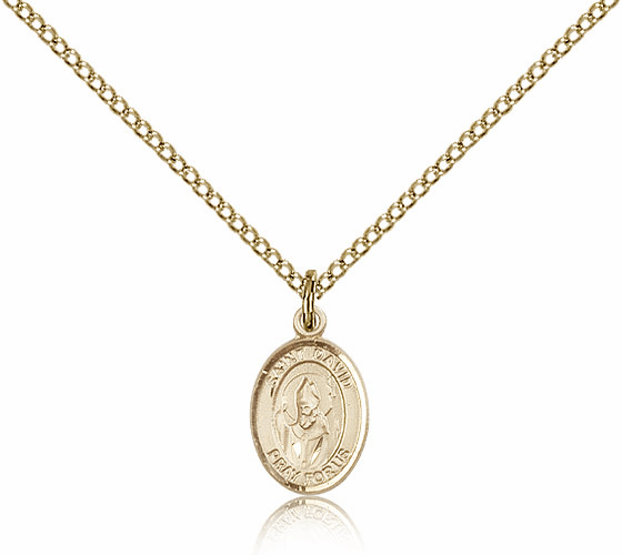 Bliss Mfg Small Gold Filled St. David of Wales Patron Saint Medals