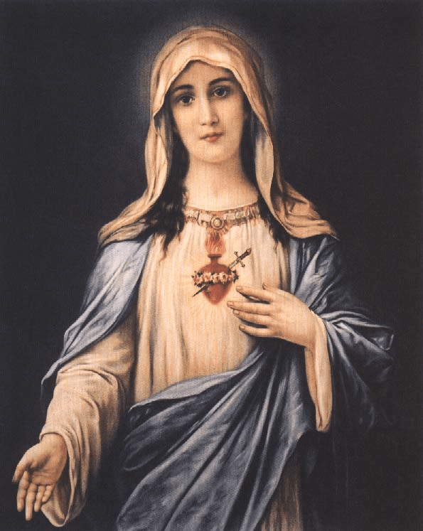 How to pray the Beads of the Immaculate Conception Chaplet