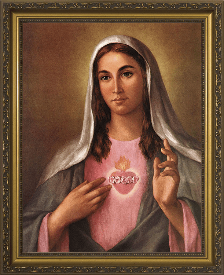 Nelson Immaculate Heart of Mary in Pink with Gold Framed Wall Art Picture