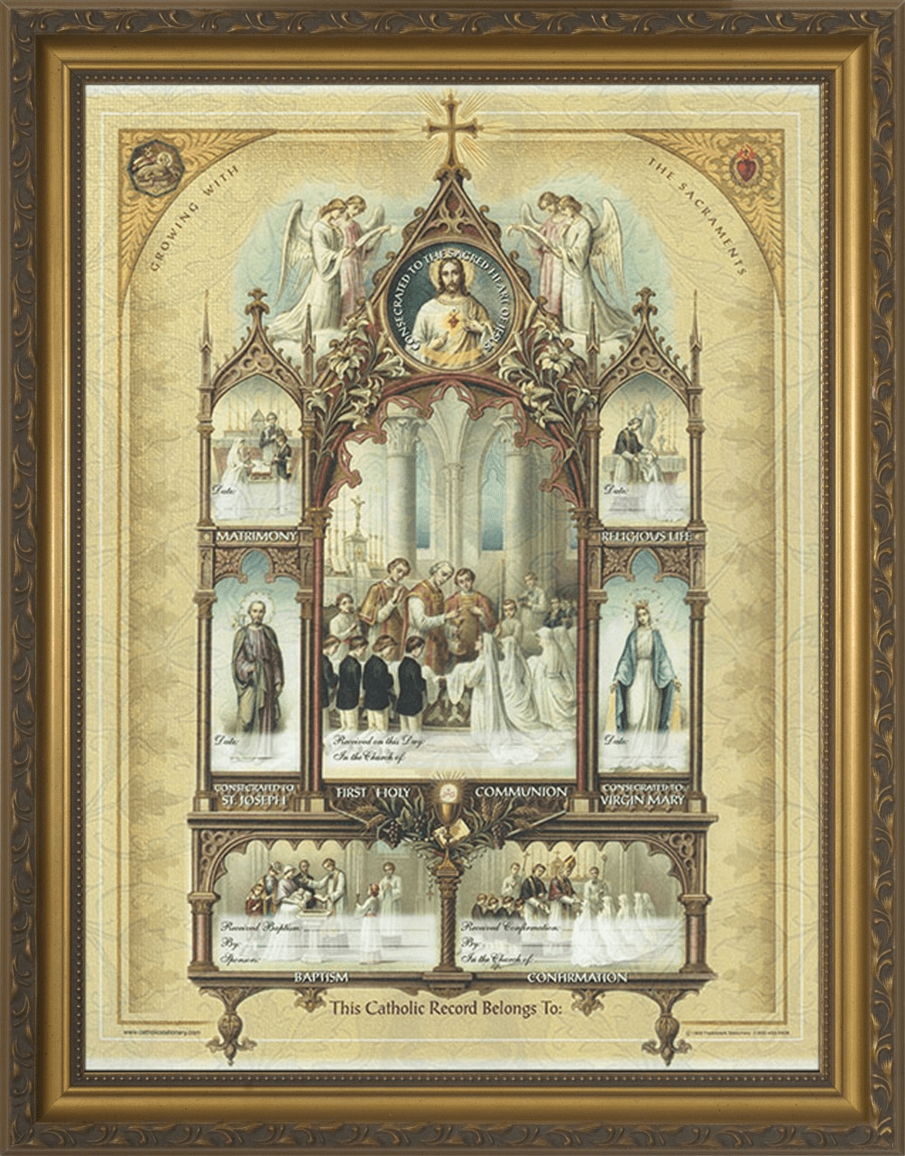 Nelson's Celebration of the Sacraments Certificate Gold Frame Wall Picture