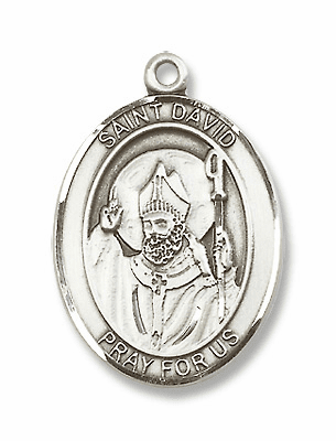 St David of Wales Jewelry & Gifts