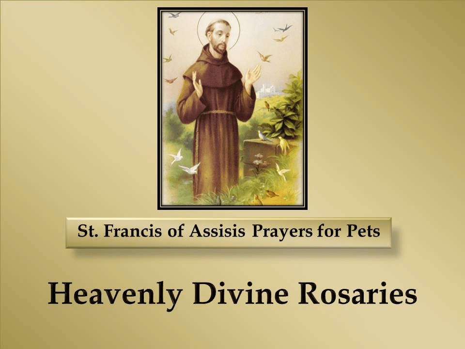 St. Francis of Assisis Prayers for Pets