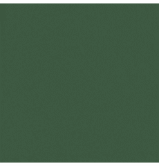 All Star Yew Green